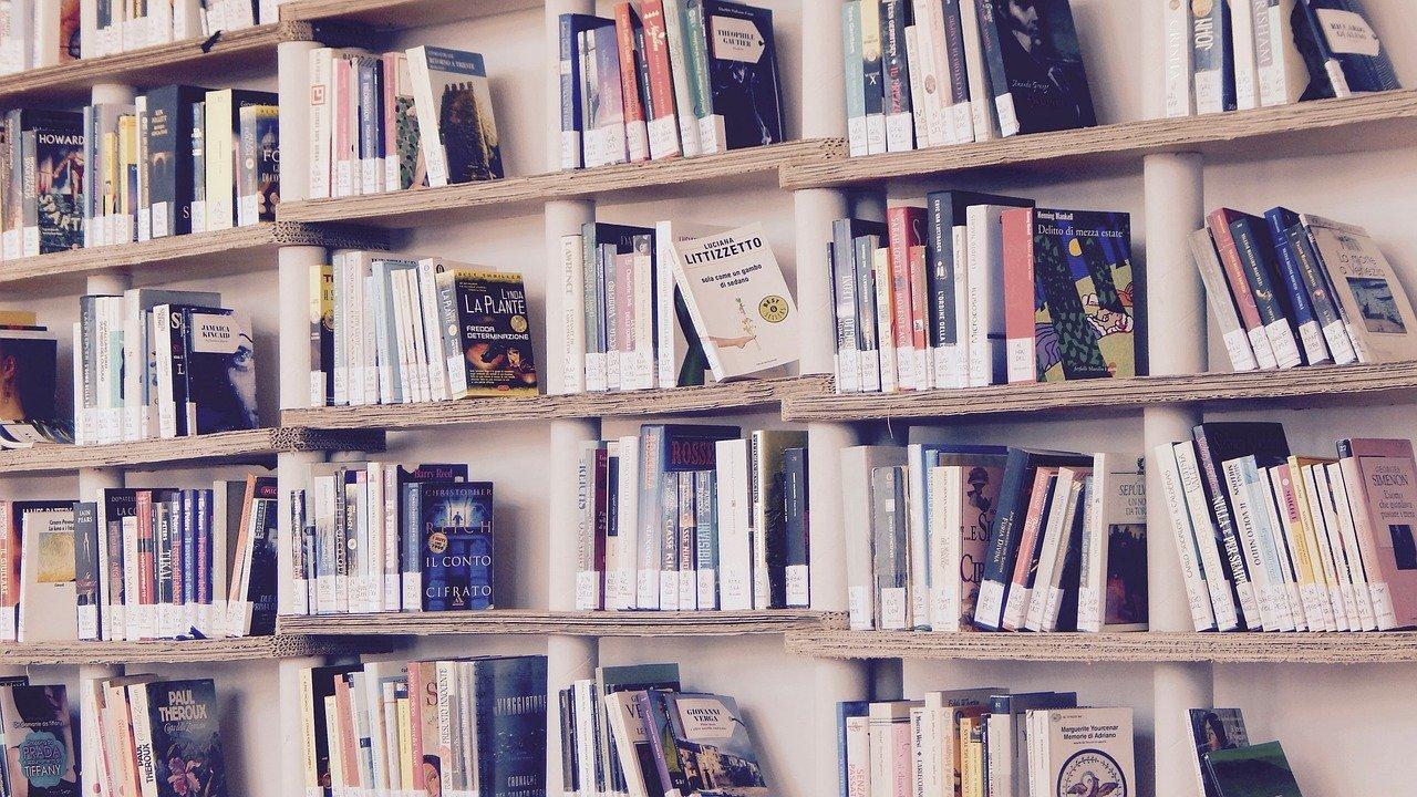 books-livros-estante-madeira-bv